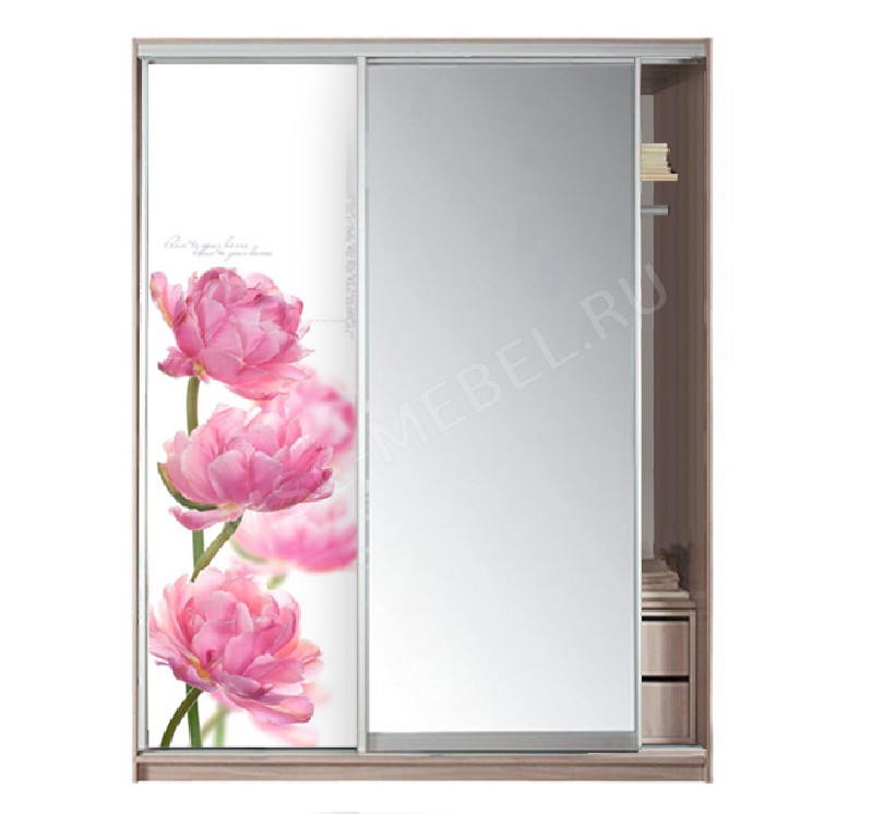 2-х дверный с зеркалом с фотопечатью (пион) Модерн Боровичи арт54