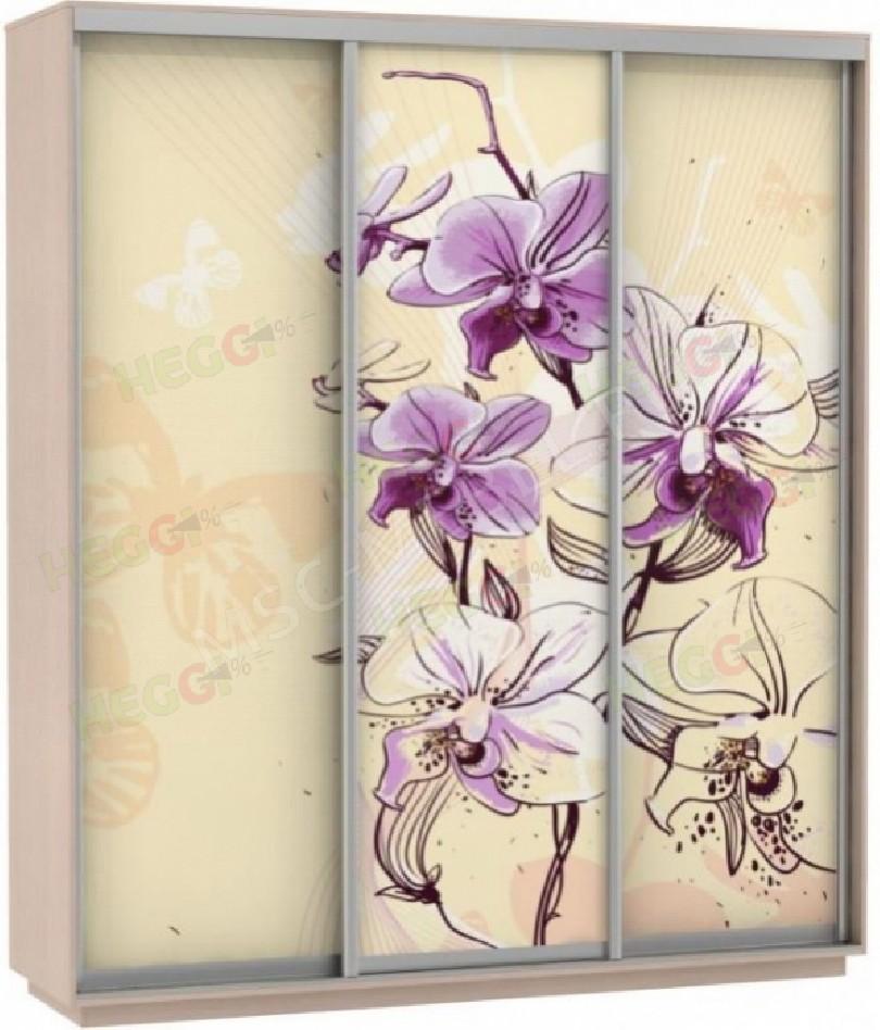 Фото Байкал (Рамир) 180 (Экспресс) фотопечать цветы